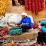 云南农村386199从业人员结构