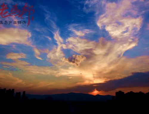 来云南最浪漫的事,坐看天边云卷云舒